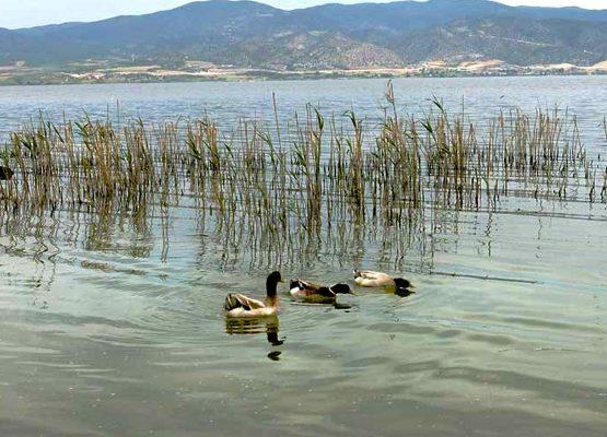 Lake Volvi